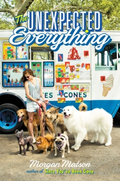 https://bookspoils.wordpress.com/2016/05/06/review-the-unexpected-everything-by-morgan-matson/