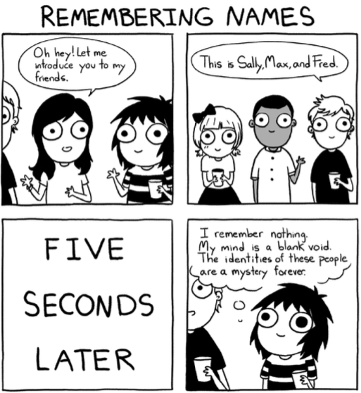 review  adulthood is a myth by sarah andersen  u2013 bookspoils