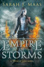 https://bookspoils.wordpress.com/2016/09/08/review-empire-of-storms-by-sarah-j-maas/