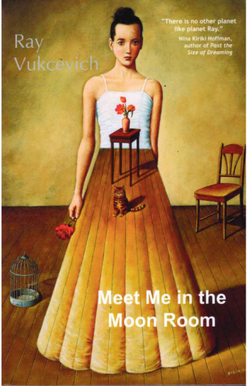 meet-me-in-the-moon-room-bookspoils
