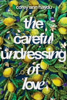 https://bookspoils.wordpress.com/2016/12/23/review-the-careful-undressing-of-love-by-corey-ann-haydu/