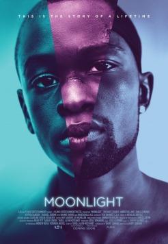 https://bookspoils.wordpress.com/2017/03/02/review-moonlight-by-barry-jenkins-tarell-alvin-mccraney/