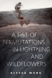a-fist-of-permutations-in-lightning-and-wildflowers-bookspoils