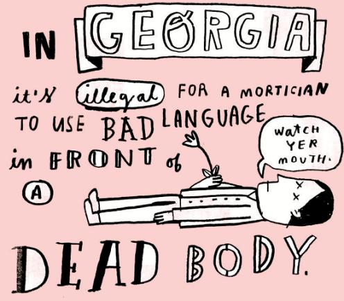 Random Illustrated Facts 13-- bookspoils