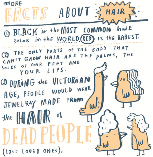 Random Illustrated Facts 6-- bookspoils