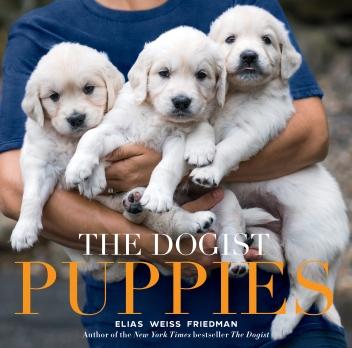 https://bookspoils.wordpress.com/2017/09/18/review-the-dogist-puppies-by-elias-weiss-friedman/